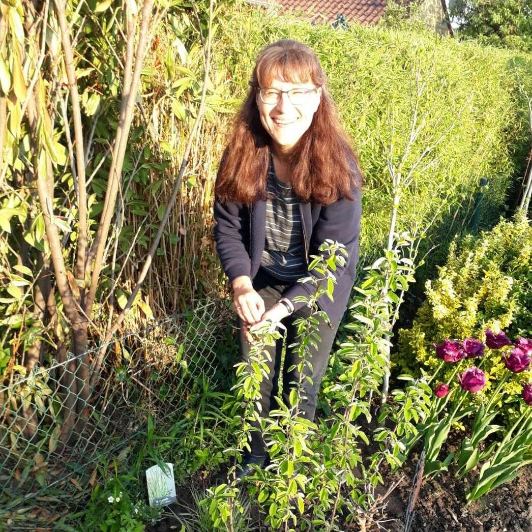 Kleingärten erhalten!